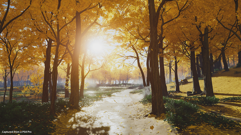 golden_forest_1